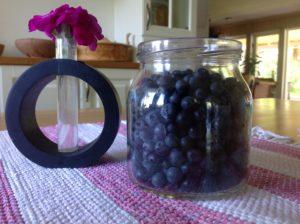 Goda blåbär går utmärkt att torka.